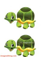 Gradient vector turtle by ImageEditing