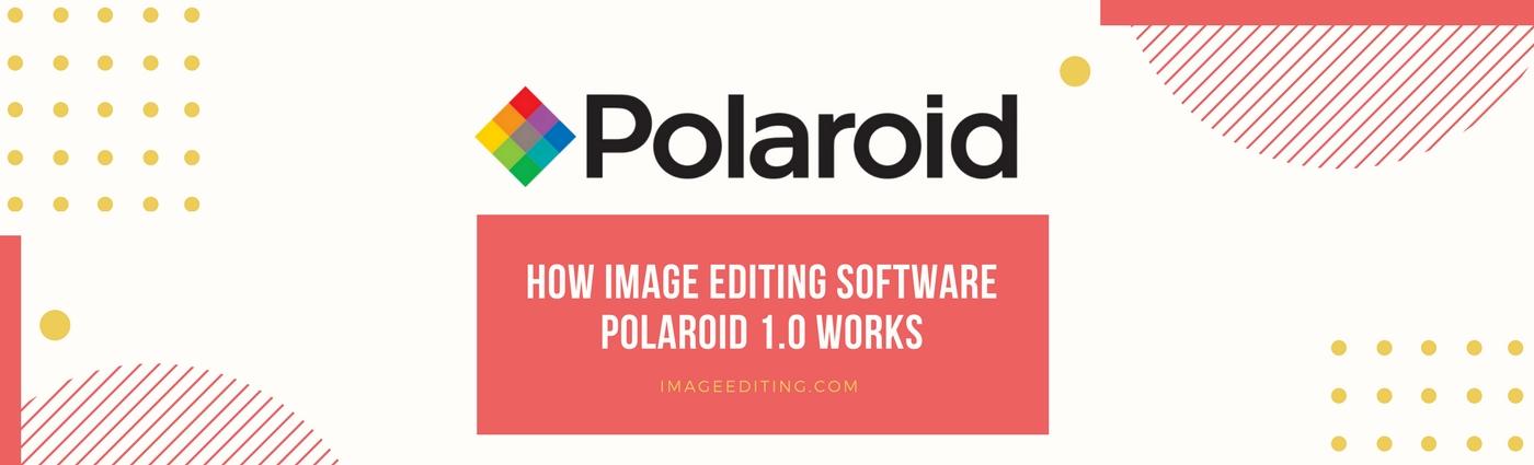 Poladroid Logo Banner