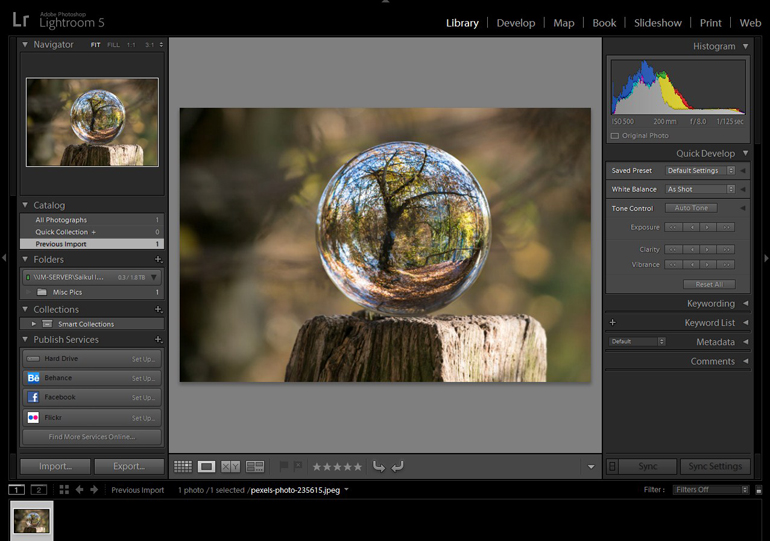 Trees and Forest in a Crystal Ball