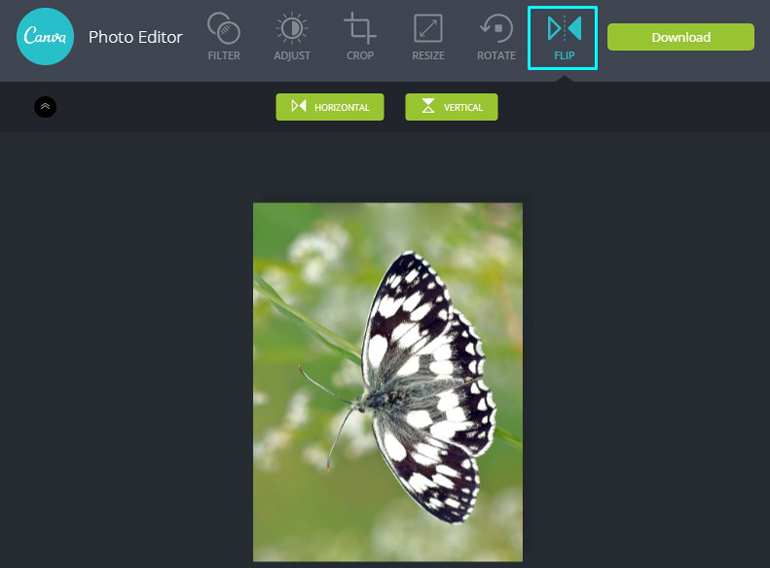 Apply Flip Tool on a butterfly in Canva Photo Editor