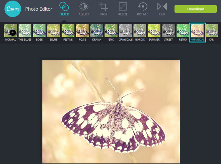 Apply Whimsical Adjustment Filter on a butterfly in Canva Photo Editor