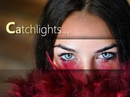 Showing how adding catchlight makes a difference image edited by imageediting