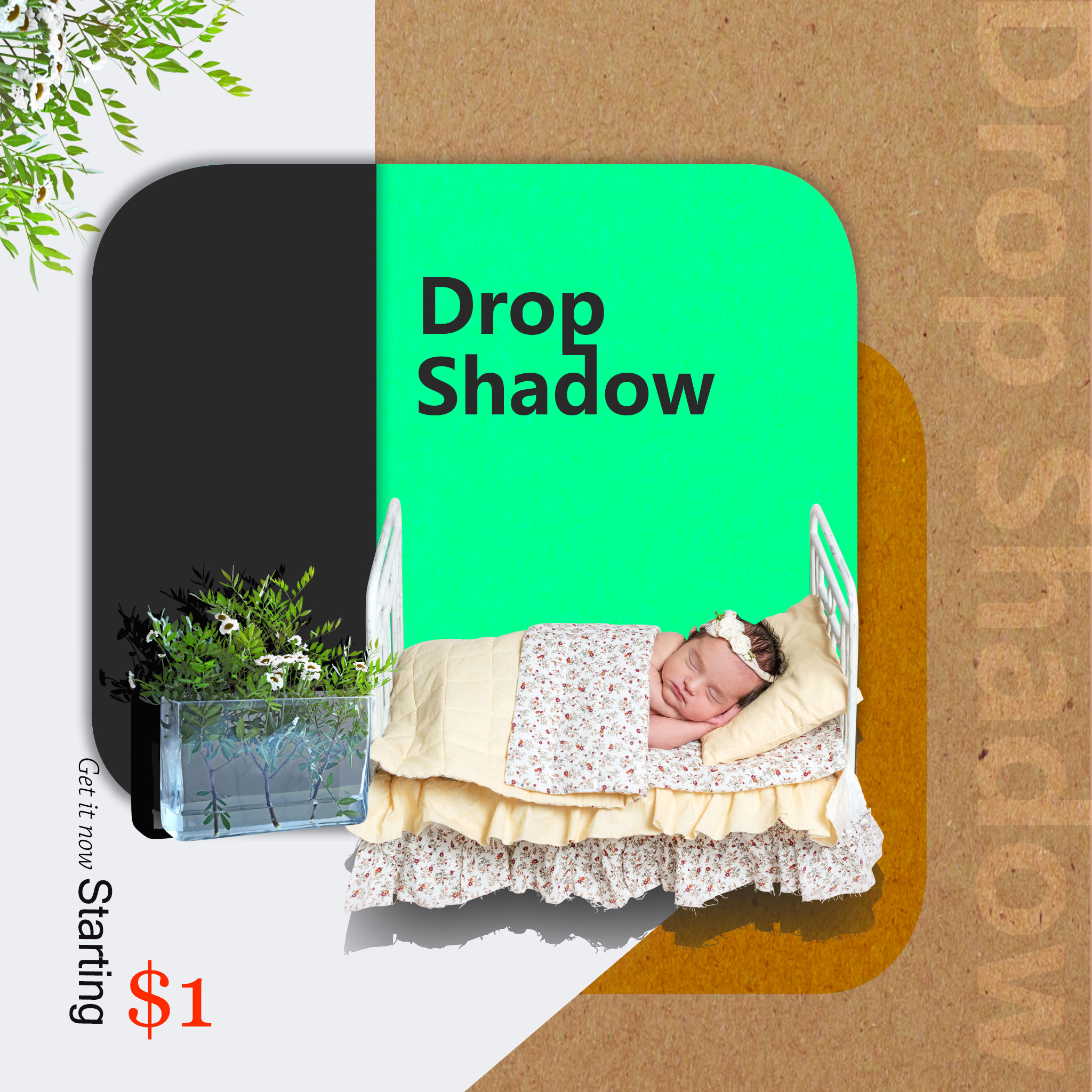 Drop Shadow  Sample 1