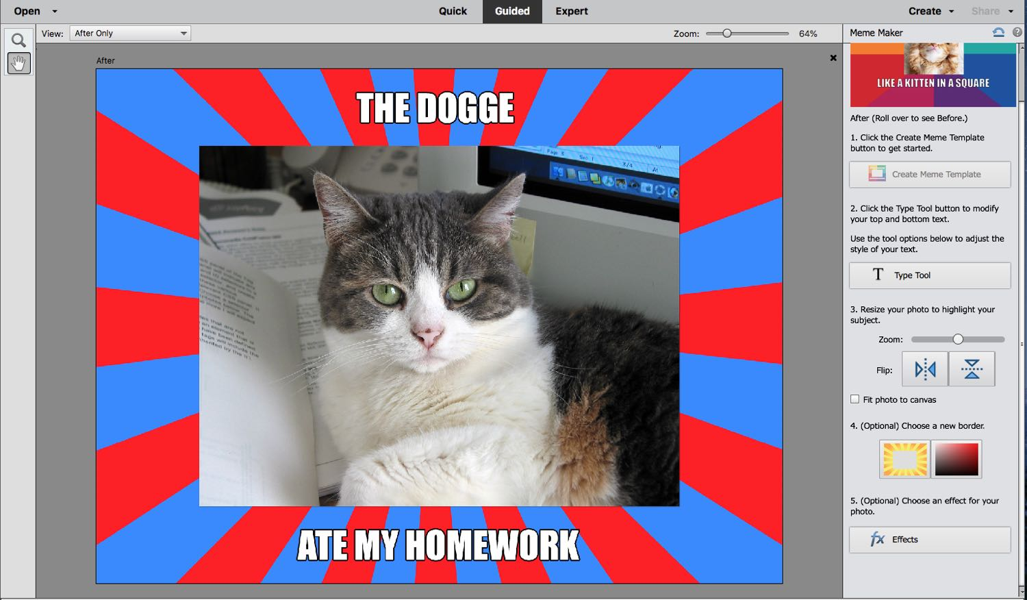 A cat image surrounded with red & blue Frame