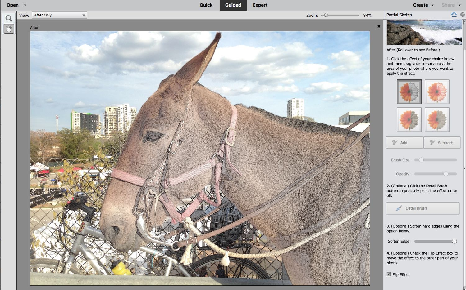 A donkey on the screen & a filter is used to show the effect