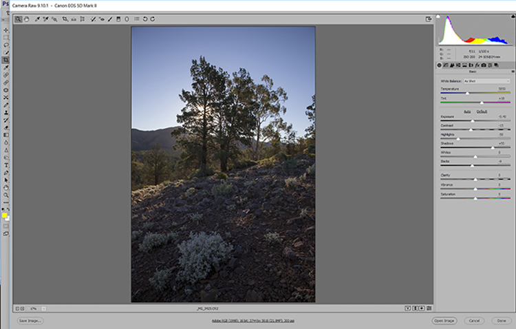 Start by opening the raw file in the conversion software and select the Auto adjustment.